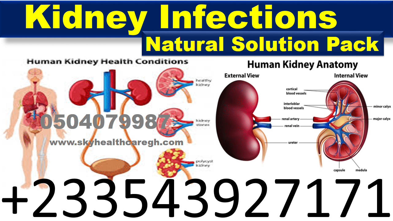 Natural Treatment for Kidney Diseases