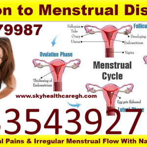 menstrual disorder remedy kit