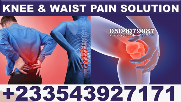 Knee and Waist Pain Solution Pack